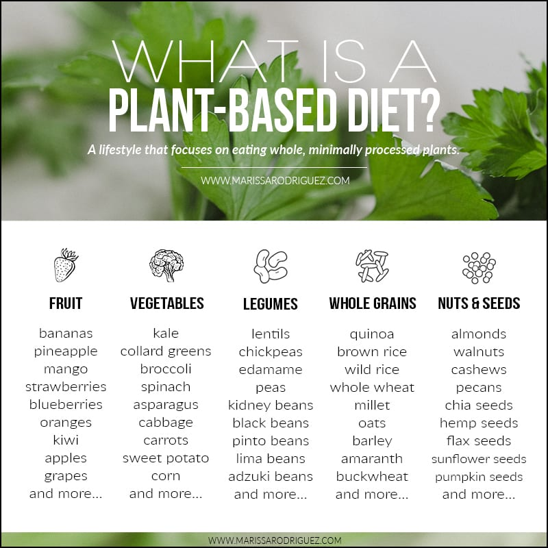 what is a plant based diet chart1