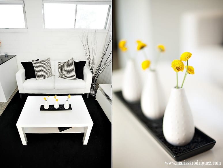 tiny-san-diego-studio-makeover-modern-before-and-after-black-white_1002